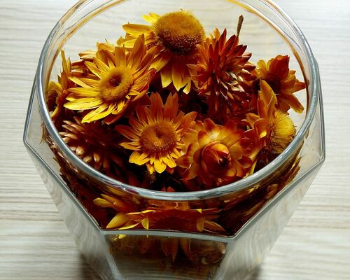 glass-dried-flowers-colorful-flowers